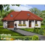 Dom w narcyzach (Biuro Projektów ARCHON+)