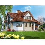 Dom w wierzbówkach (Biuro Projektów ARCHON+)